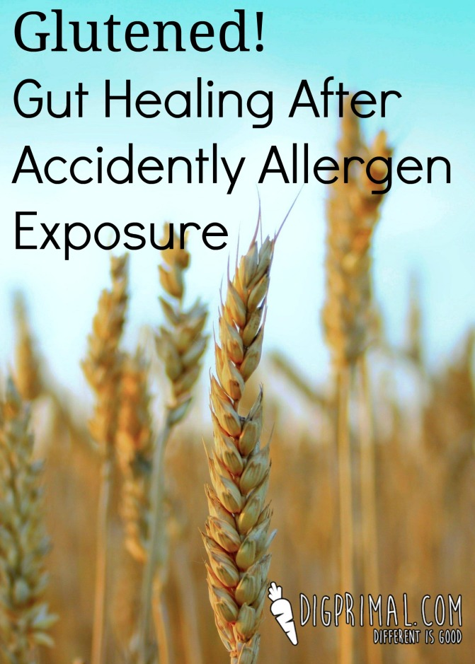 Glutened! Gut Healing After Accidental Allergen Exposure