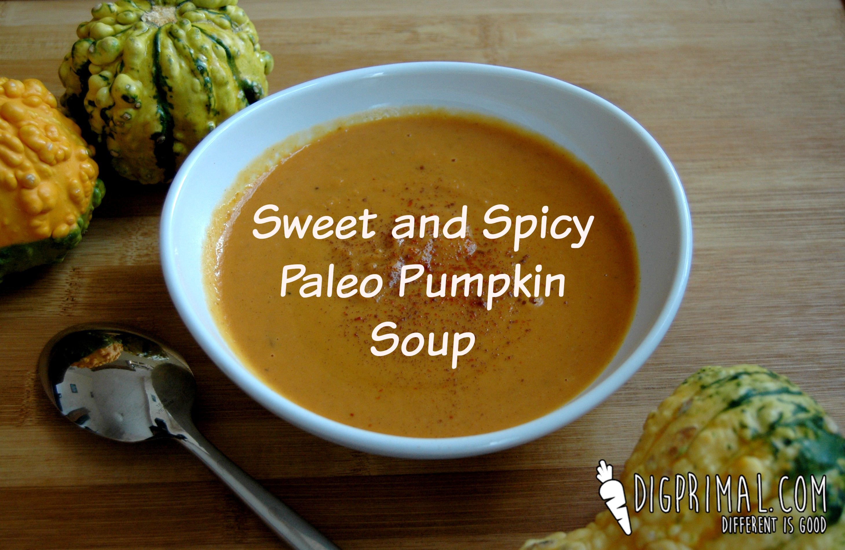 Sweet and Spicy Paleo Pumpkin Soup – D.I.G.