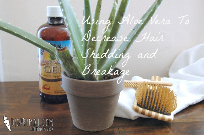 Using Aloe Vera to Decrease Hair Shedding and Breakage