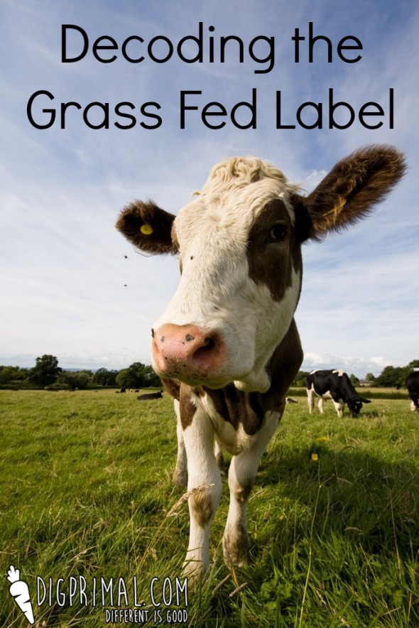 Decoding the Grass Fed Label Screenshot
