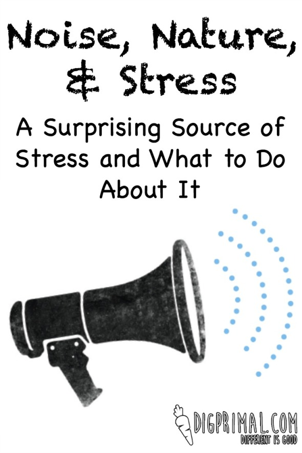 Noise, Nature, and Stress A Surprising Source of Stress and What to Do About It