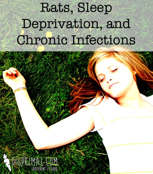 Rats, Sleep Deprivation, and Chronic Infections